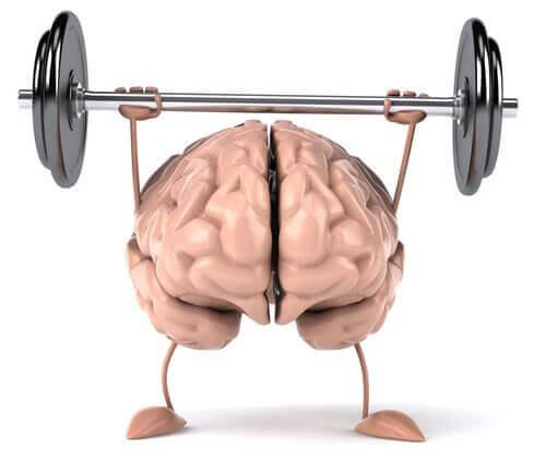 Cómo mantener tu cerebro activo: 4 ejercicios para probar en casa