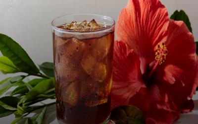 La guía definitiva del té: beneficios y tipos de té en el mundo